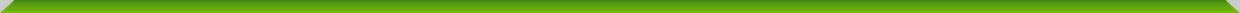 Header green bar