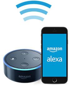 Connect Amazon Echo Dot