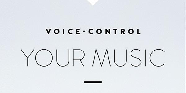 Amazon Echo Dot Voice Recognition