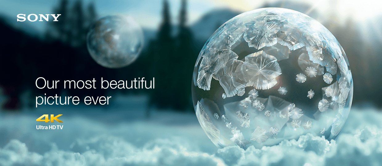 Celebrate every detail - 4k ultra HD from Sony